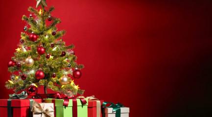tree_christmas_read